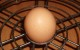 Яйца в аэрогриле